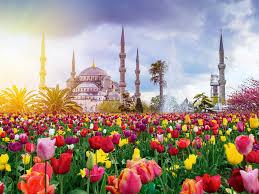 Автобусна_екскурзия_Истанбул.jpg
