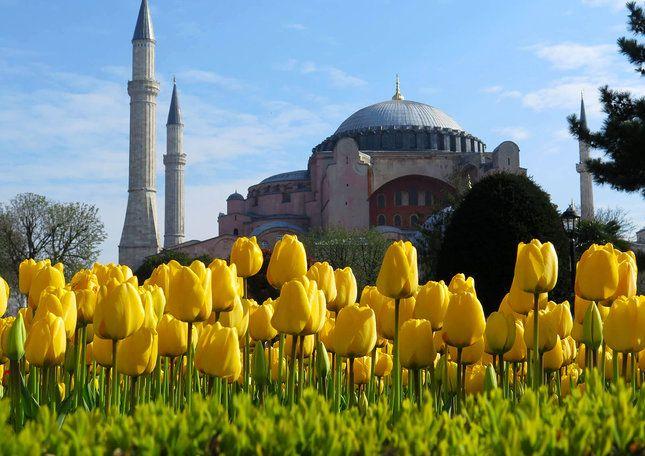 Istanbul-tulip_festival.jpg